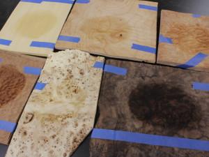 Half a dozen veneer species layed on a table